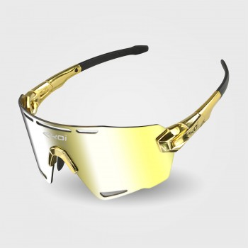 Sunglasses EKOI PREMIUM 90 LTD STAR Gold